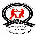 کمیته دفاع شخصی و قوة الرمی استان آذربایجان شرقی
